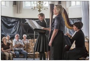 Het Ronsard Trio juni 2013